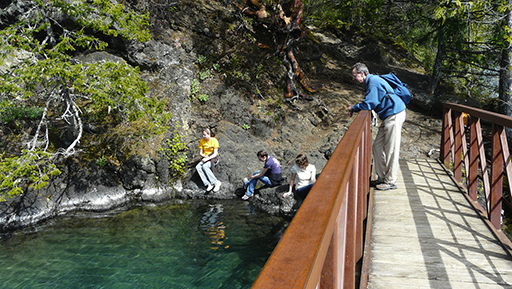 guide to washington u0026 39 s hiking trails